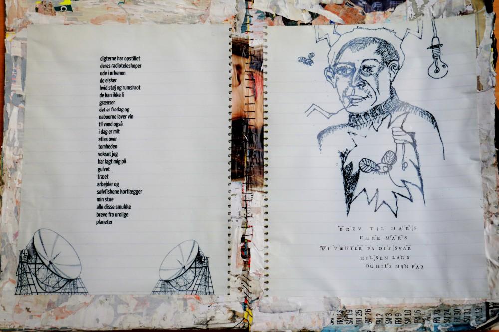Natatlas, Hillerød Bibliotek, Lars Emil Foder, L.E.F., de langsomme lyn, rakel Thorning-vater, udstilling