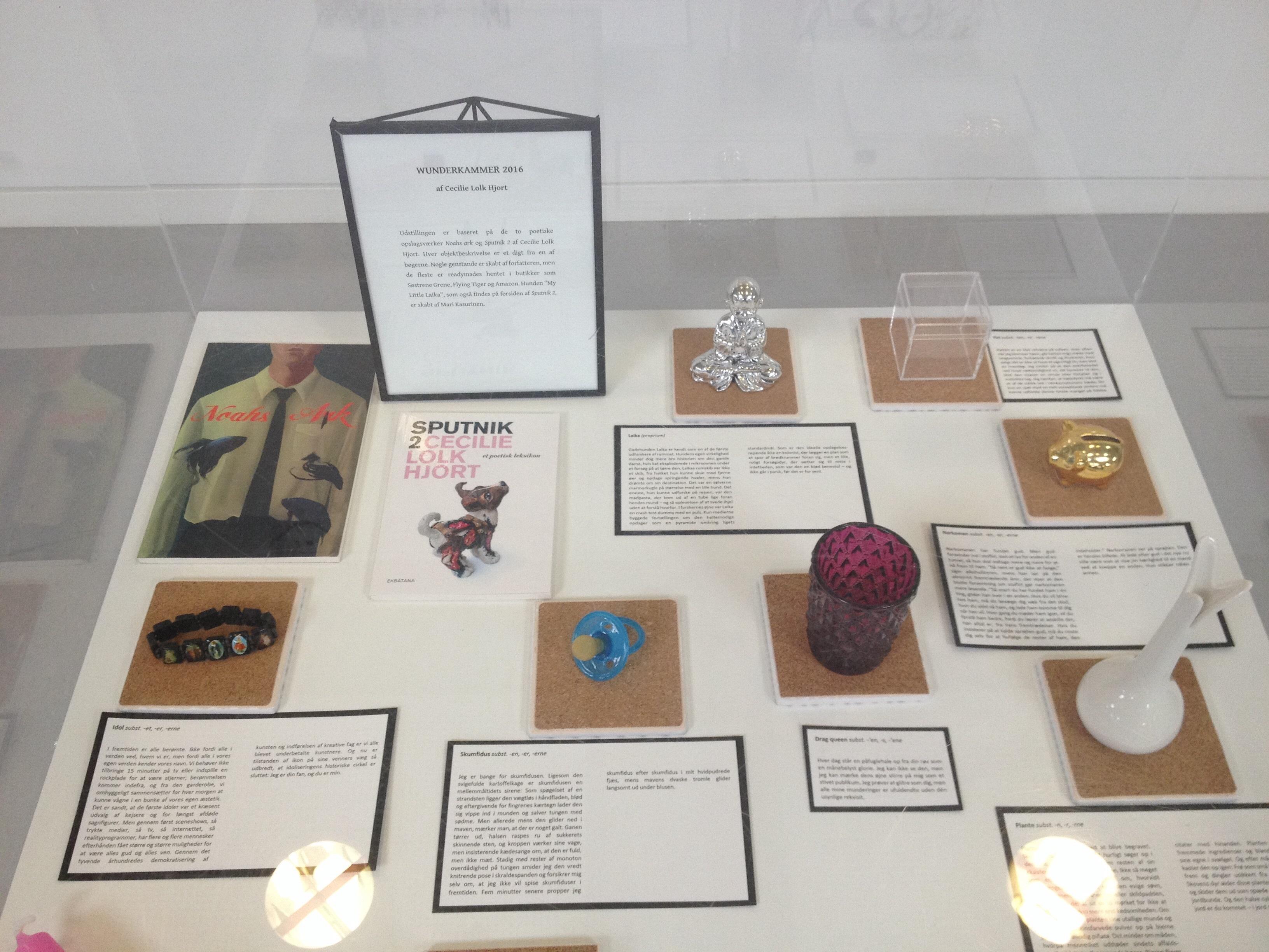 Wunderkammer, Cecilie Lolk Hjort, Sputnik 2, Noahs ark, Hørsholm bibliotek