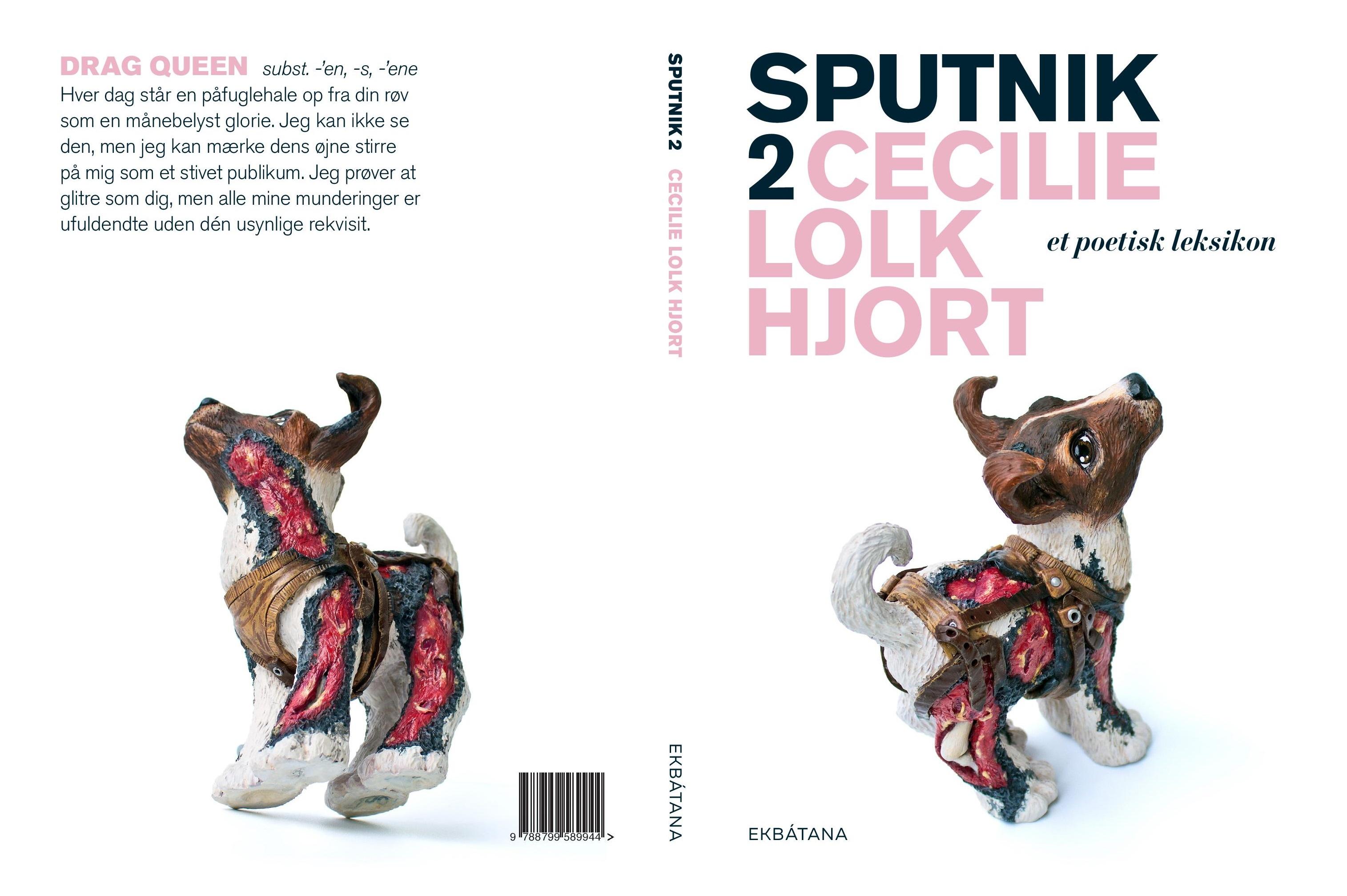 release på sputnik 2, Cecilie Lolk Hjort, Sputnik 2, poetisk leksikon, Galathea kroen