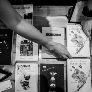 Bøger, forlaget ekbatana, lille Bogdag